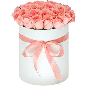 Доставка цветов бишкек цветы комнатные купить в челябинске